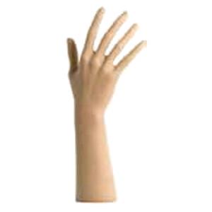 Damenhand, hautfarben, Höhe: 29 cm
